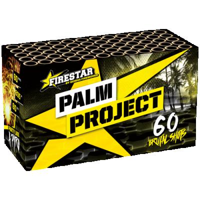 Palm Project