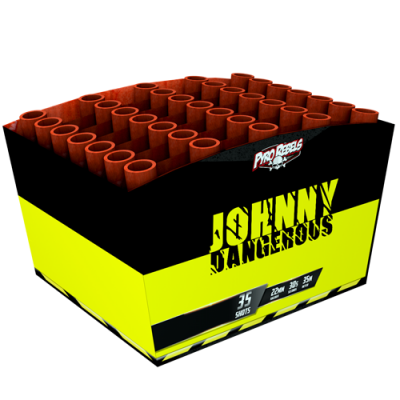 Johnny Dangerous