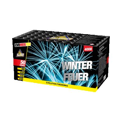 Winterfeuer