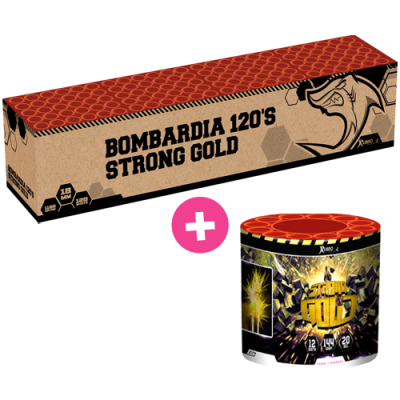 Bombardia + Strong Gold