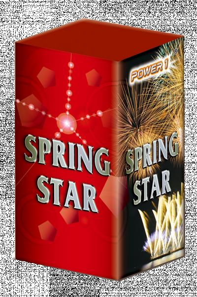 Spring Star*