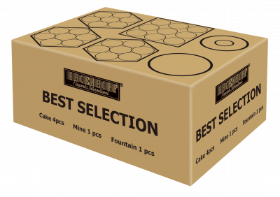 Best Selection*_