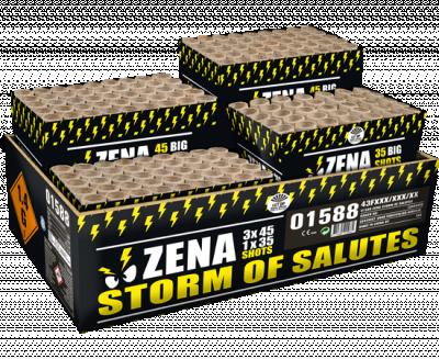 Zena Storm of Salutes_* (op=op)