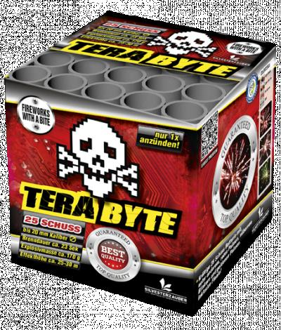terabyte kassa