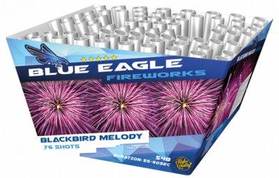 Blackbird Melody