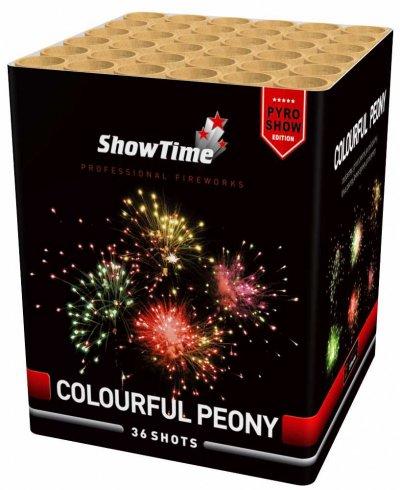 Colorfull Peony
