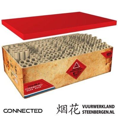 Dutch Protocol display battery box