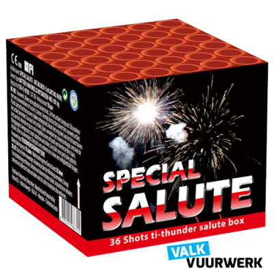 Valk Special Salute 36 schots