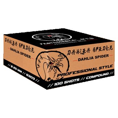 Dahlia Spider