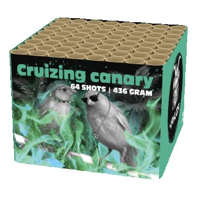 Cruizing Canary