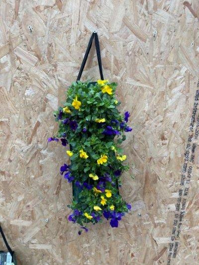 Hangzak violen geel paars