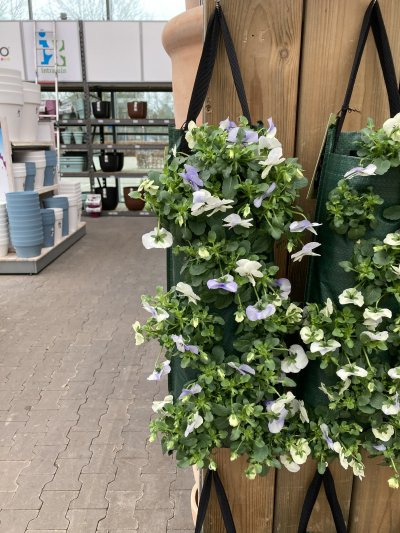 Hangzak violen wit roze