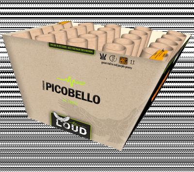 Picobello