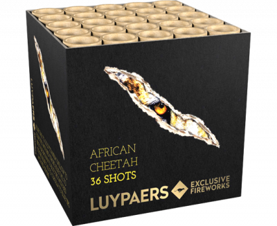 African Cheetah 36shots*