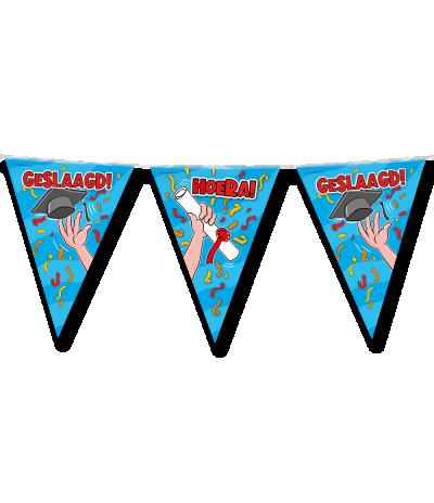 vlaggenlijn Geslaagd school cartoon (10 meter)