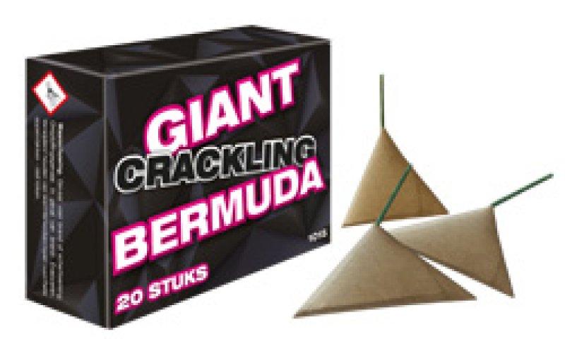Giant Crackling Bermuda