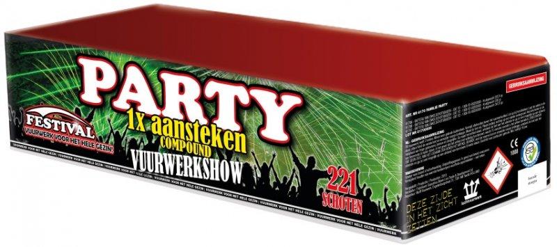 Festival Party Familie Vuurwerk