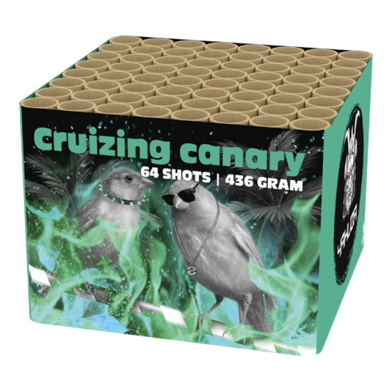 Cruizing canary_ (op=op)