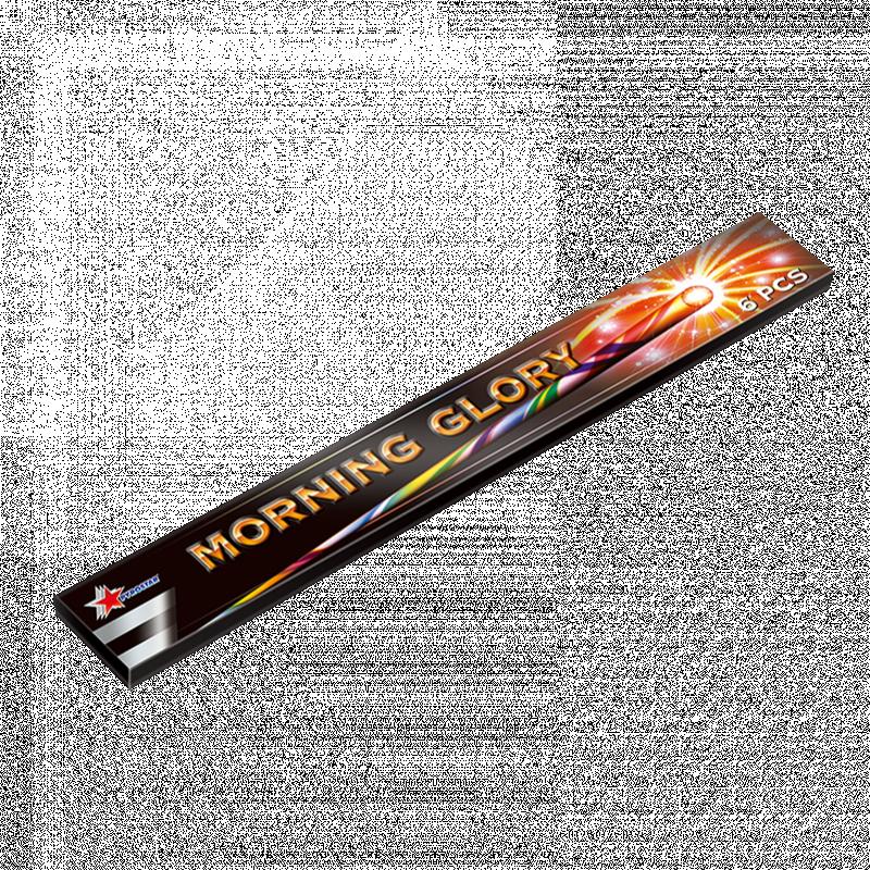 MORNING GLORY 6 STUKS