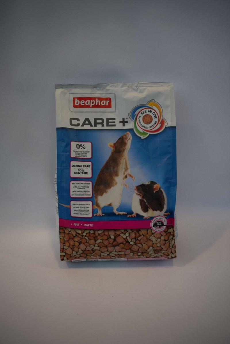 Care+ rat