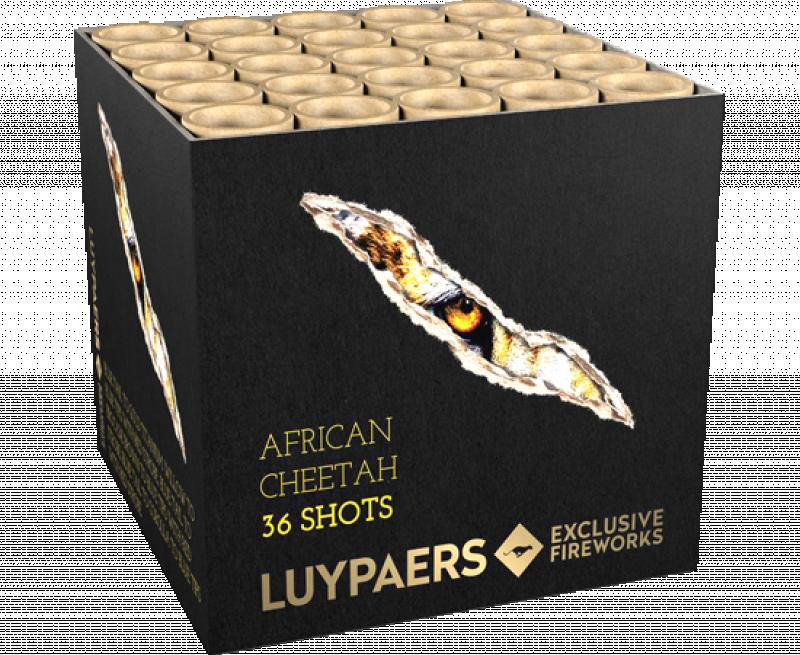 African Cheetah 36sh